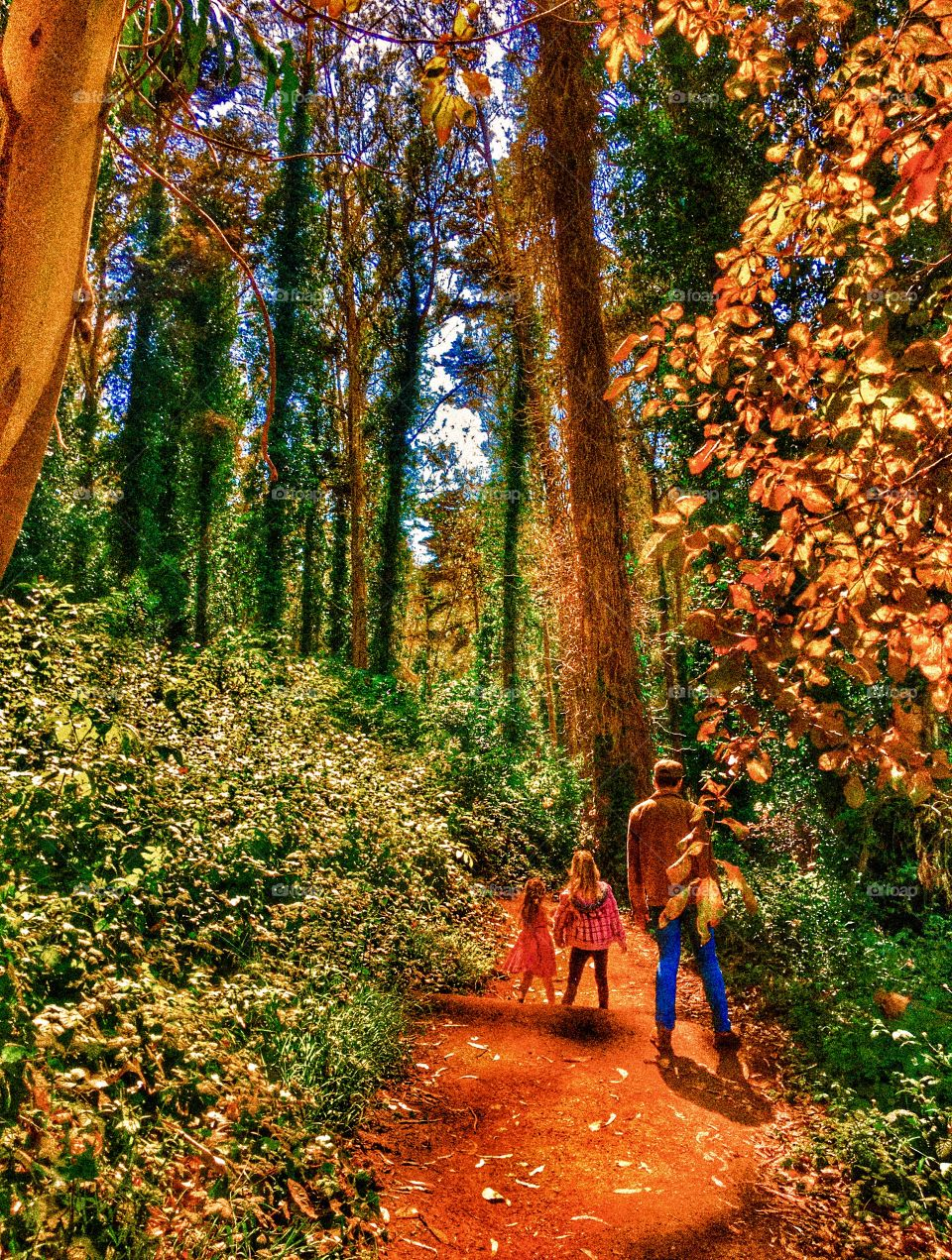 Autumn is here! Interior Greenbelt of San Francisco with father and daughters on path