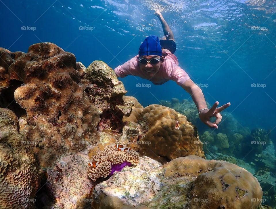 Sattahip,Chon Buri/Thailand-November 24 2019:Colorful under sea world with Anemone Fish  at Samae San island