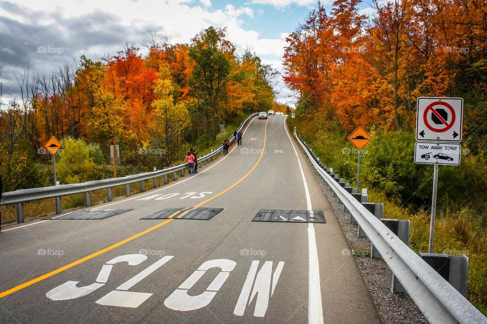 Autumn road trip in Canada