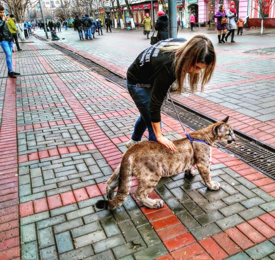 Saratov Russia. Street