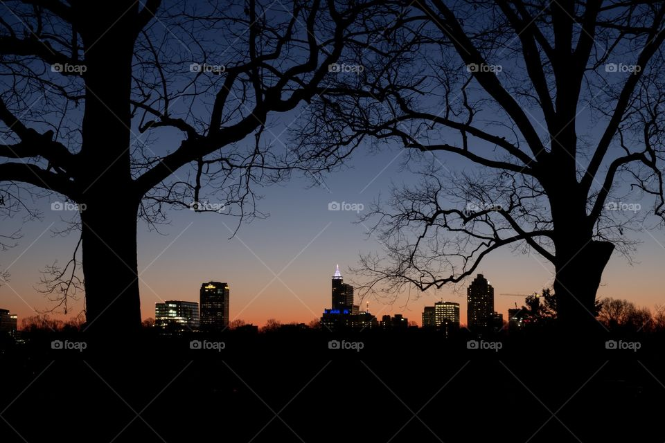Raleigh, North Carolina is known as the City of Oaks. So, here is the cityscape view framed by two barren mighty oaks just before sunrise.
