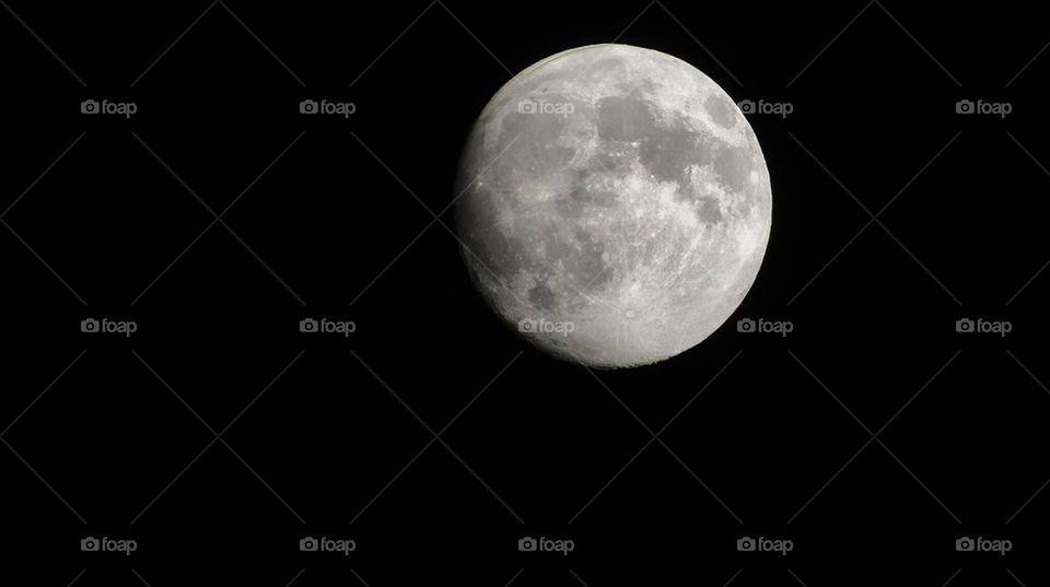Moonlight | image, summer, night, walk