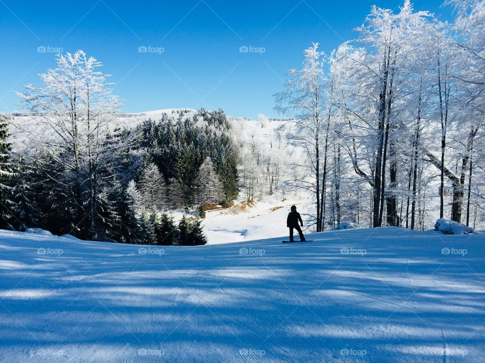Man with snowboard going down the slope surrounded by trees covered in snow