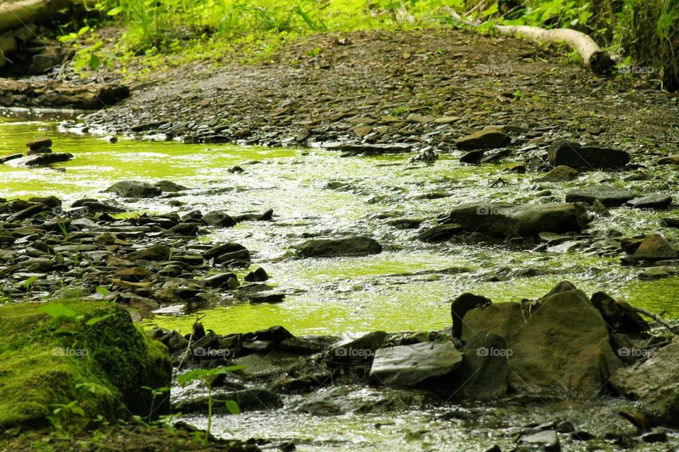 natural flowing stream