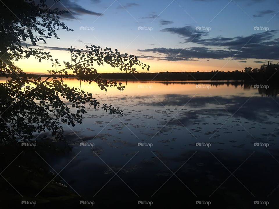 Beautiful Summer sunset! Sky is reflected in the lake. Black branches and trees make beautiful contrast.