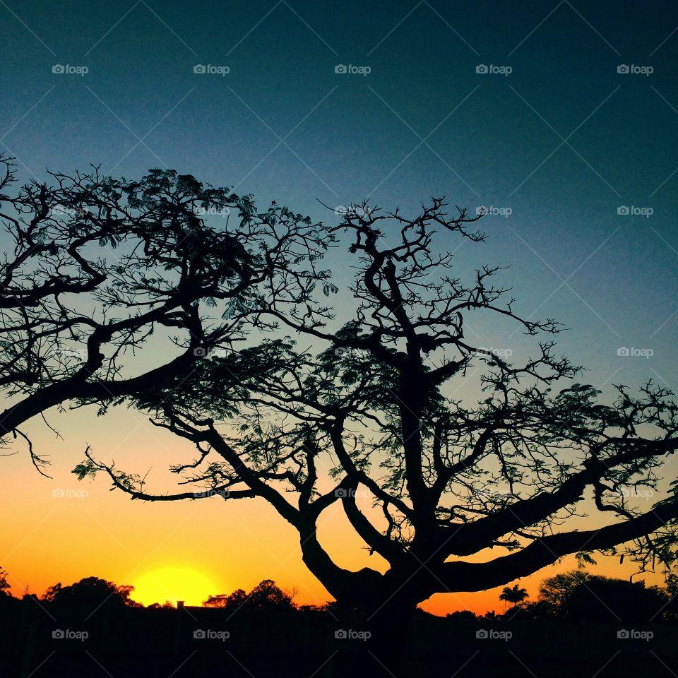 FOAP MISSIONS - 🌄🇺🇸 An extremely beautiful dawn in Jundiaí, interior of Brazil. Cheer the nature! / 🇧🇷 Um amanhecer extremamente bonito em Jundiaí, interior do Brasil. Viva a natureza!