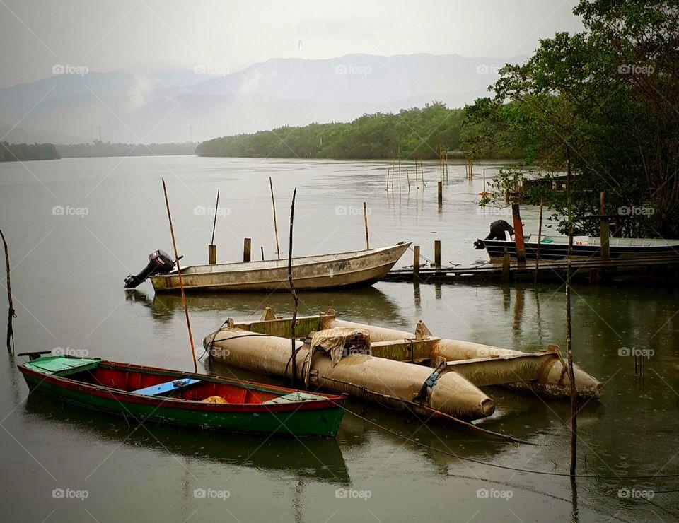 Ilha Diana na Área Continental de Santos/island diana in the continental area in the city of Santos.