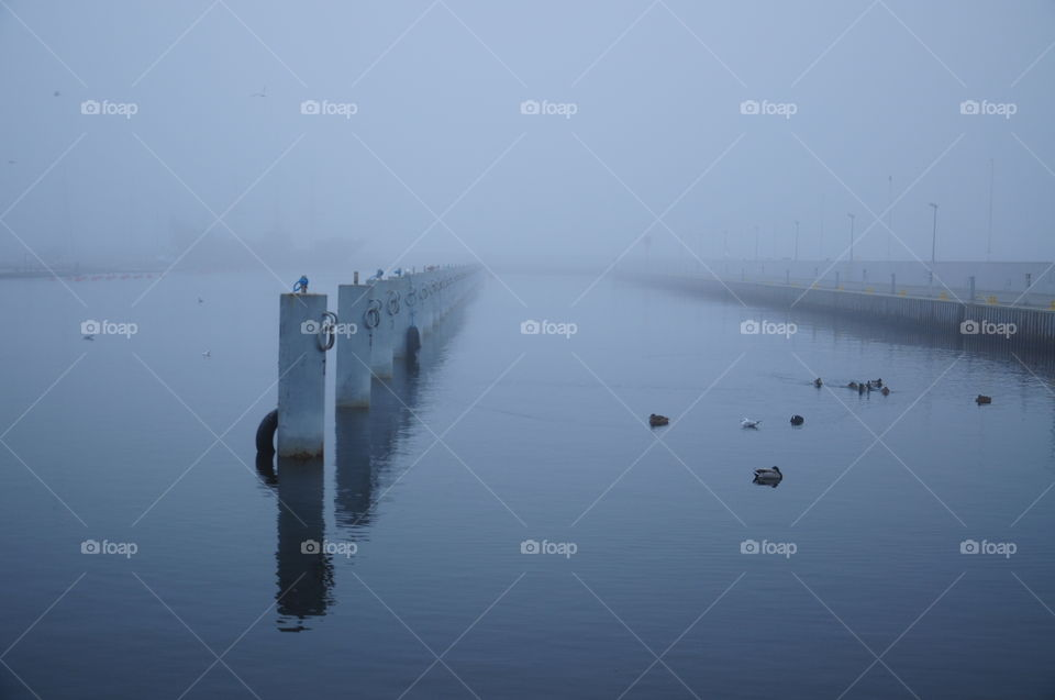 foggy morning in port at the Baltic sea coast in Poland