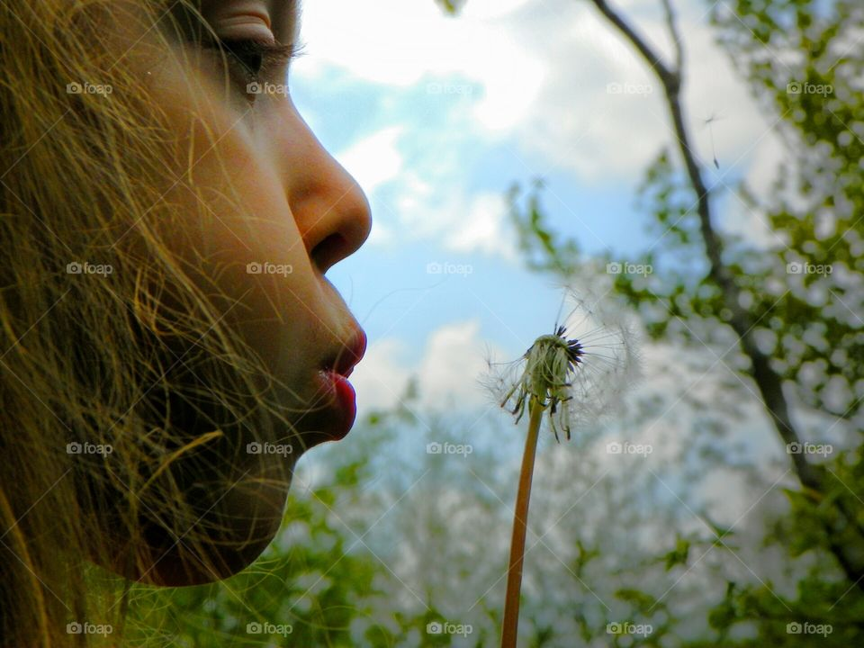 Make a Wish. on a dandelion