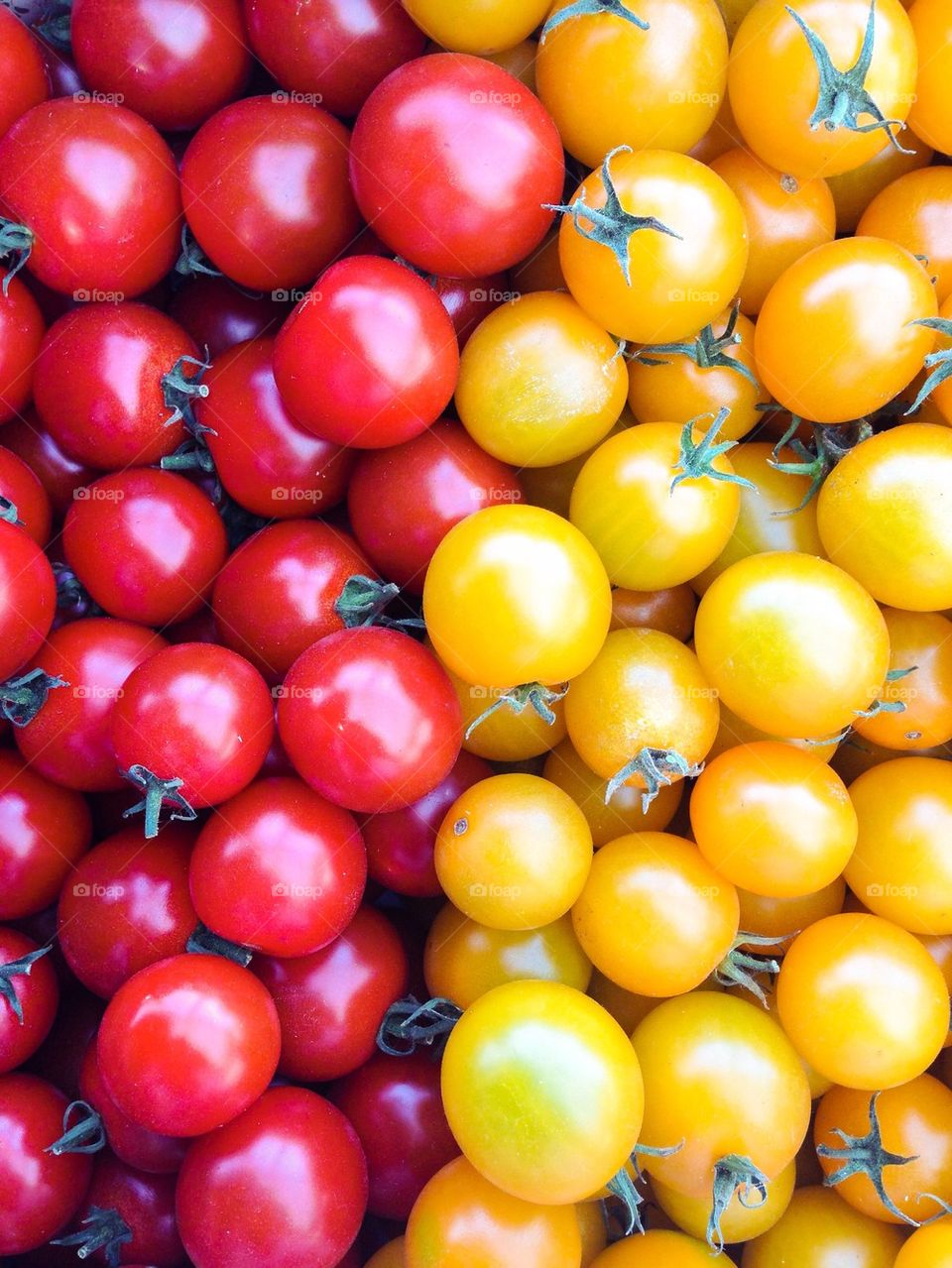 Variations of tomatoes