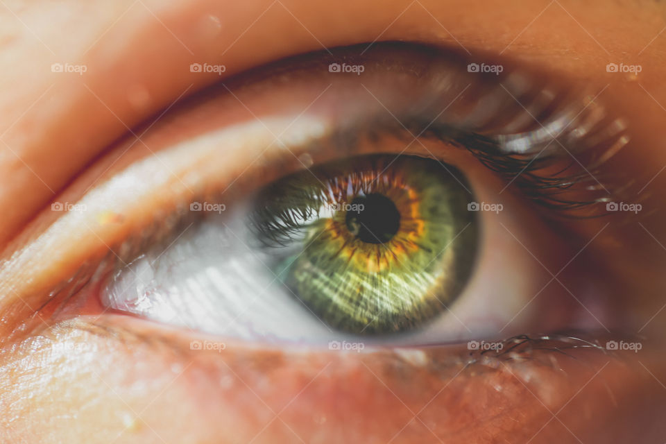 Details of human eye