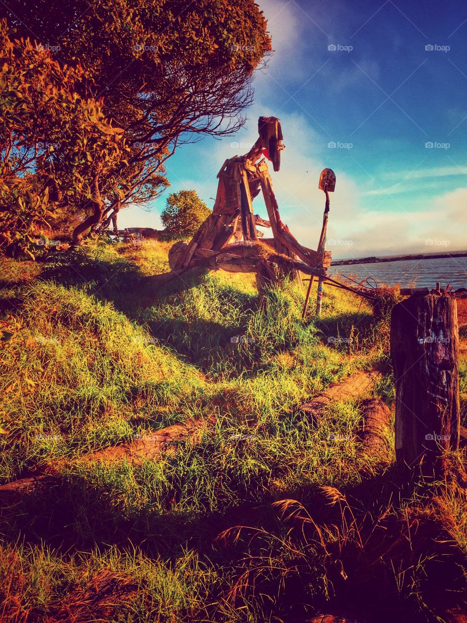 Autumn is here! Albany Bulb