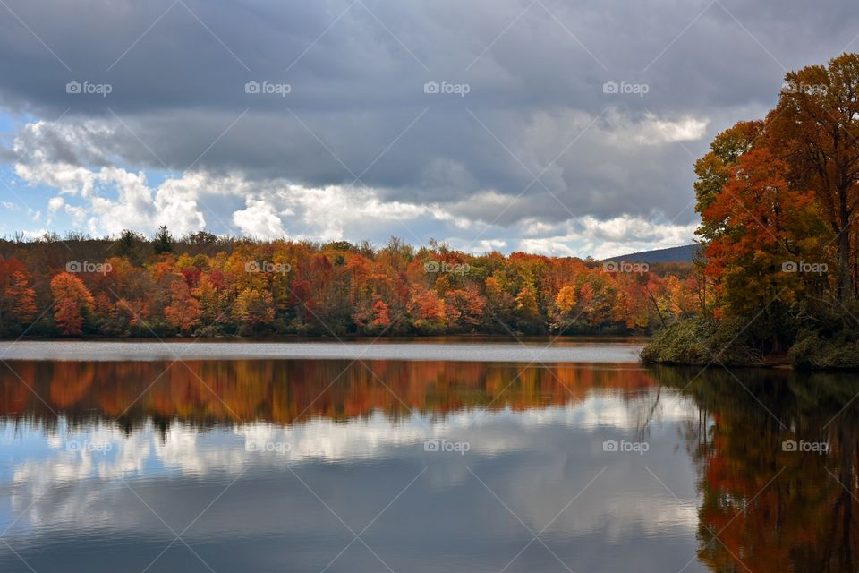 Autumn trees reflected on river