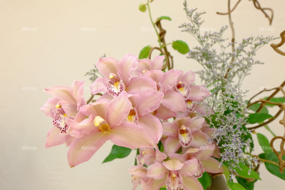 Pink orchids in a floral arrangement