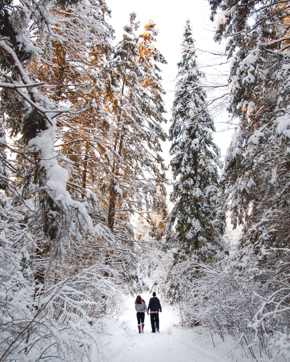 A young couple walking through a massive snowy forest on a beautiful hiking trail
