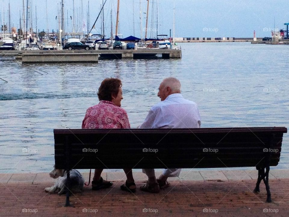 Old friends on a bench
