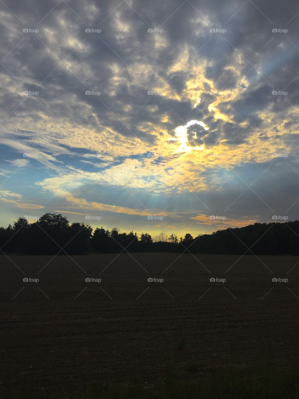 Sunset, Landscape, Dawn, Evening, Sky