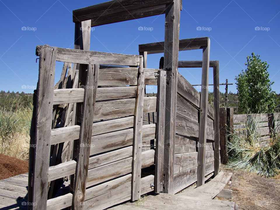 An old weathered wooden cattle shoot no longer in use on a ranch in rural Central Oregon on a sunny summer day.