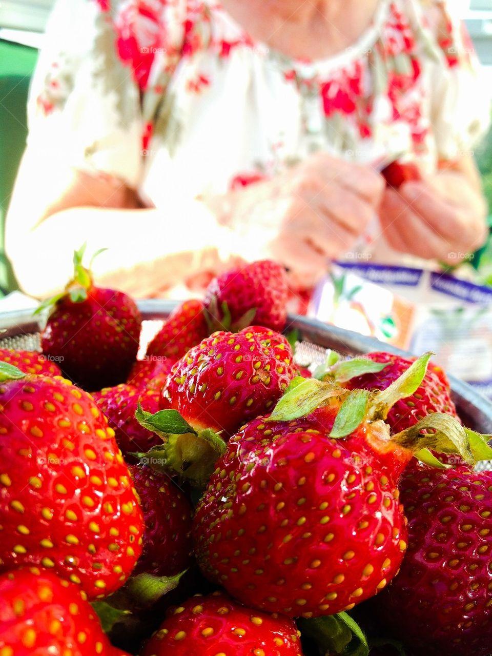 Strawberry lover. Strawberries