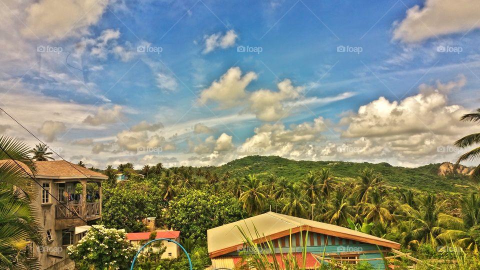 Countryside view Bathsheba Barbados