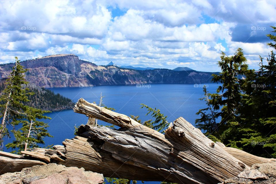The Edge of Crater Lake