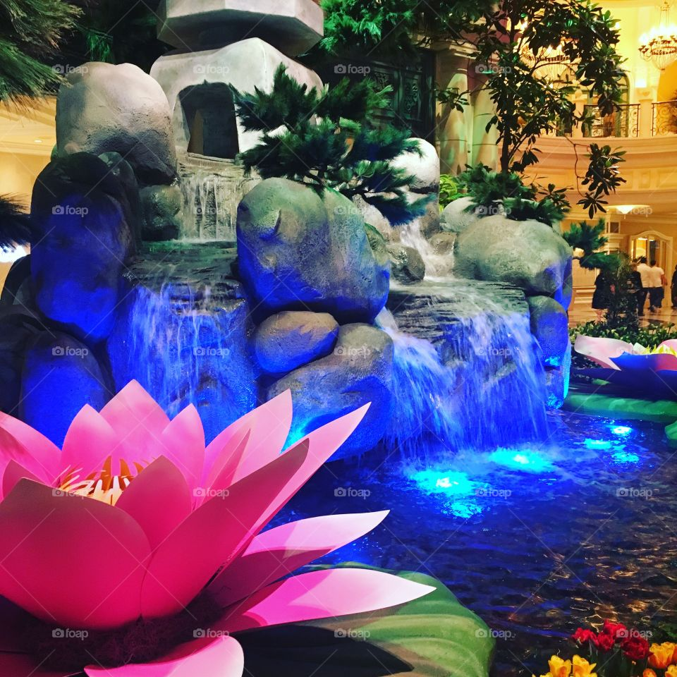 Bellagio Conservatory- Japanese Spring 2018