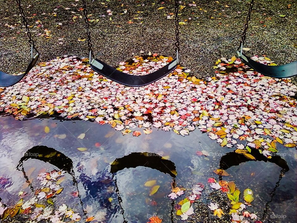 Autumn Puddles on the Playground