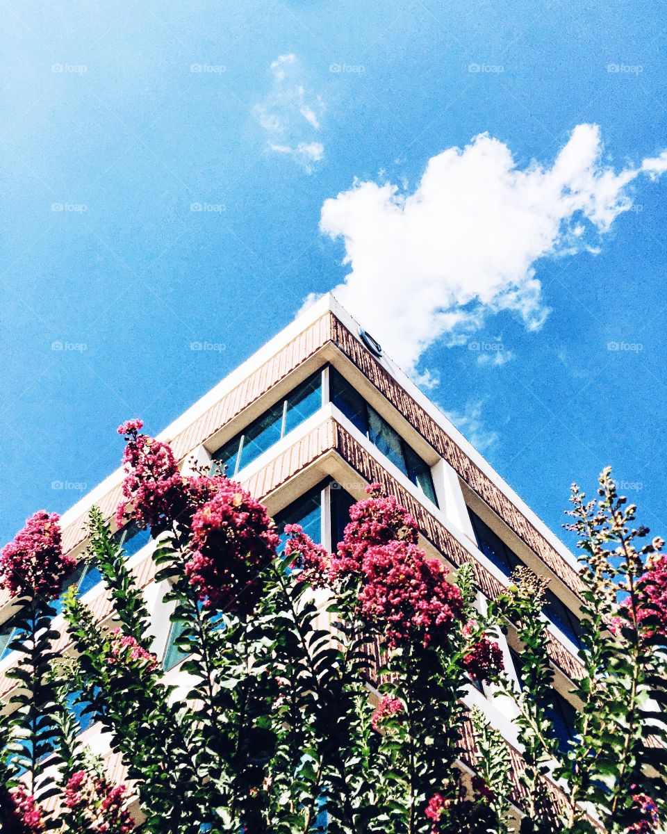 Architecture, No Person, Building, Sky, Outdoors