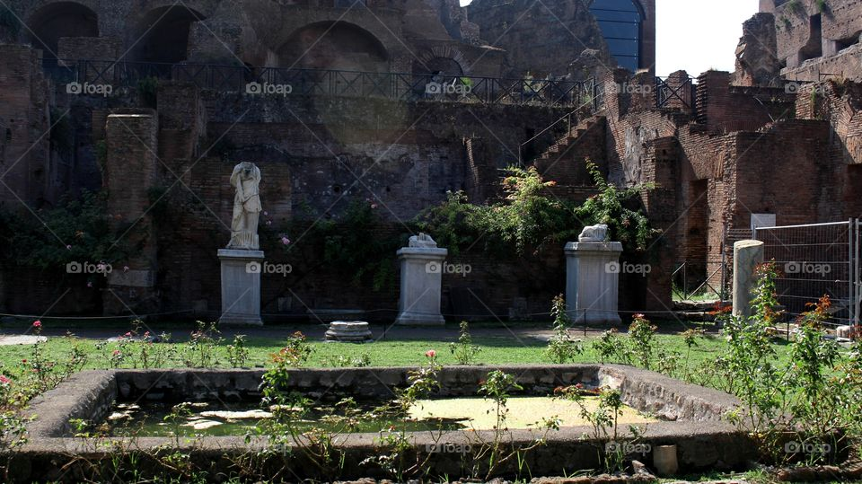 Foro romano. Rome.