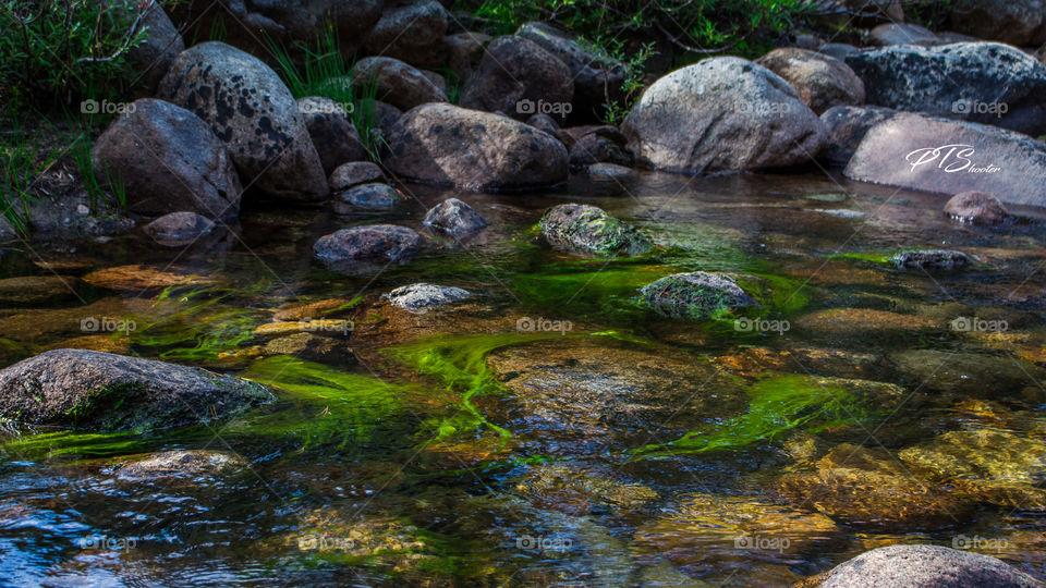Fall Travel Yosemite Creek