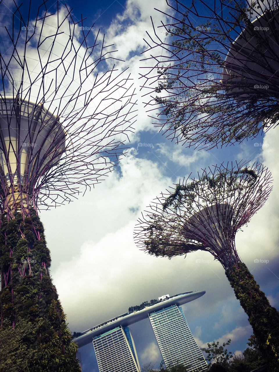 Electric trees. Gardens by the bay. Singapore.