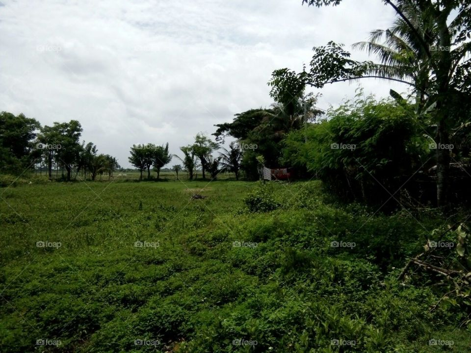 Village at Rajeg