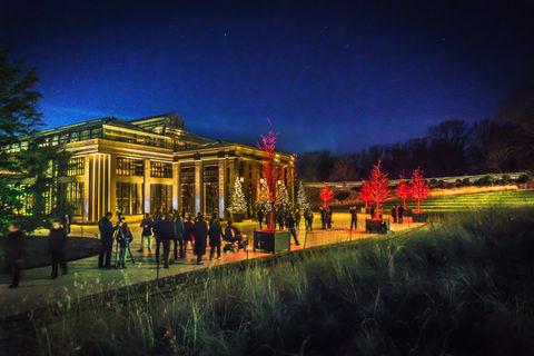 Night at Longwood Gardens