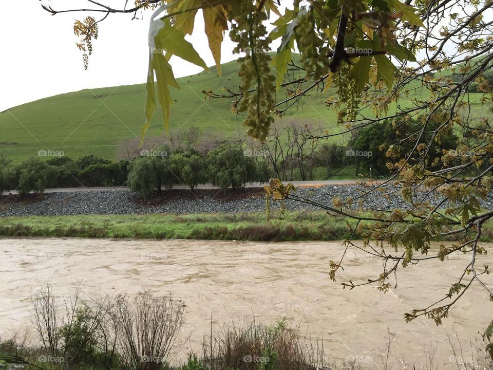 Creek swelling with rain water