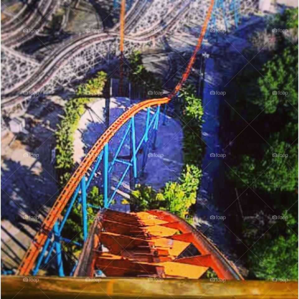 Roller coaster view