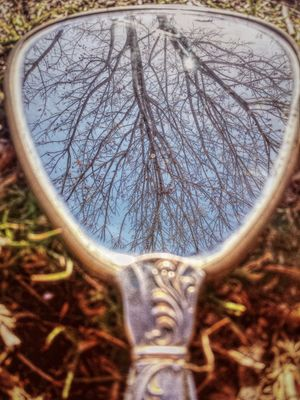 Vintage Hand Mirror Reflects Nature