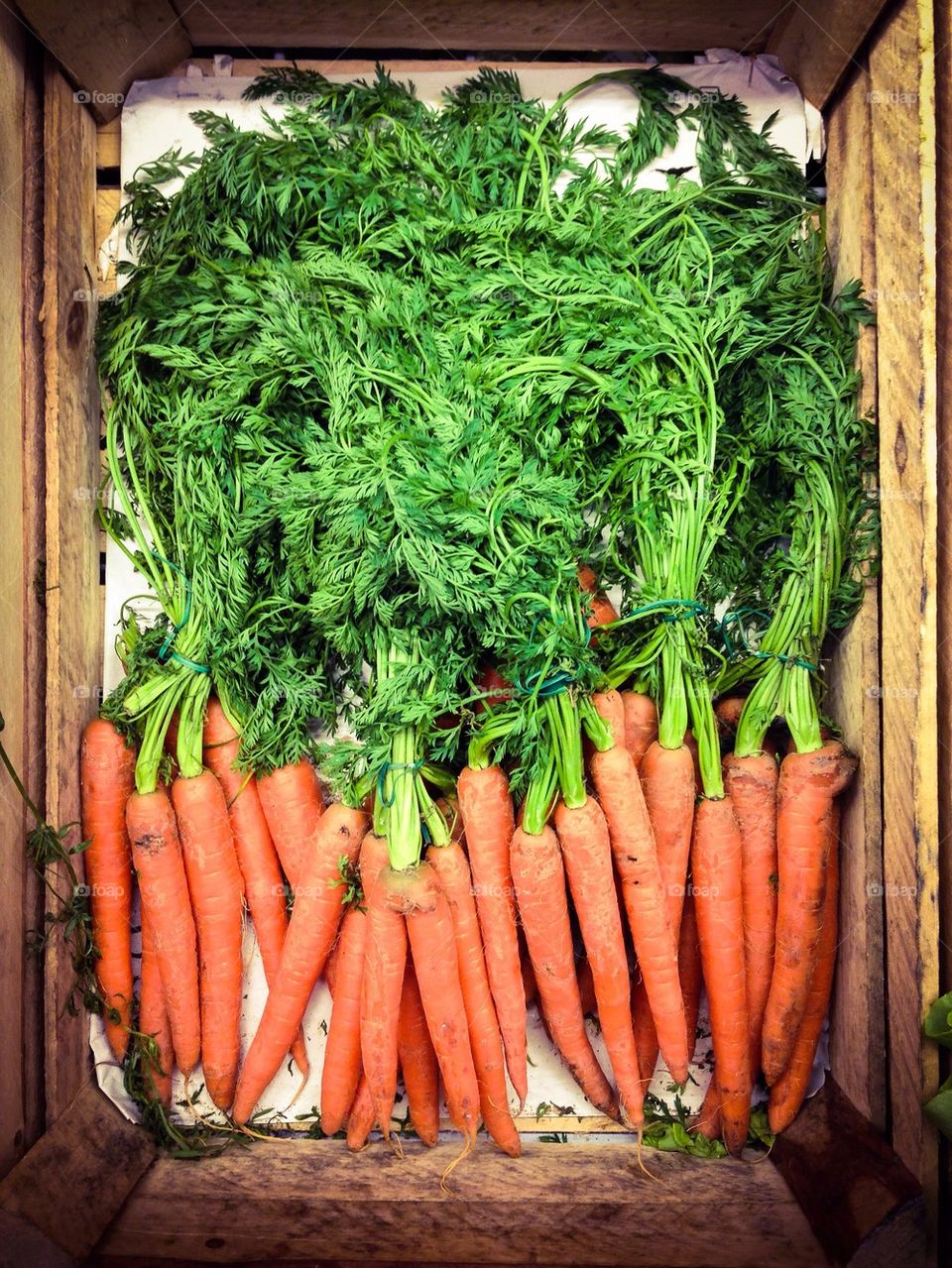 Carrots in container