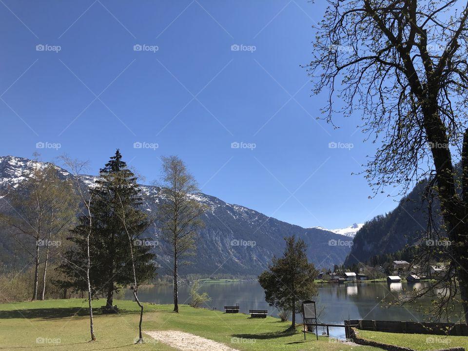 Austrian Springtime