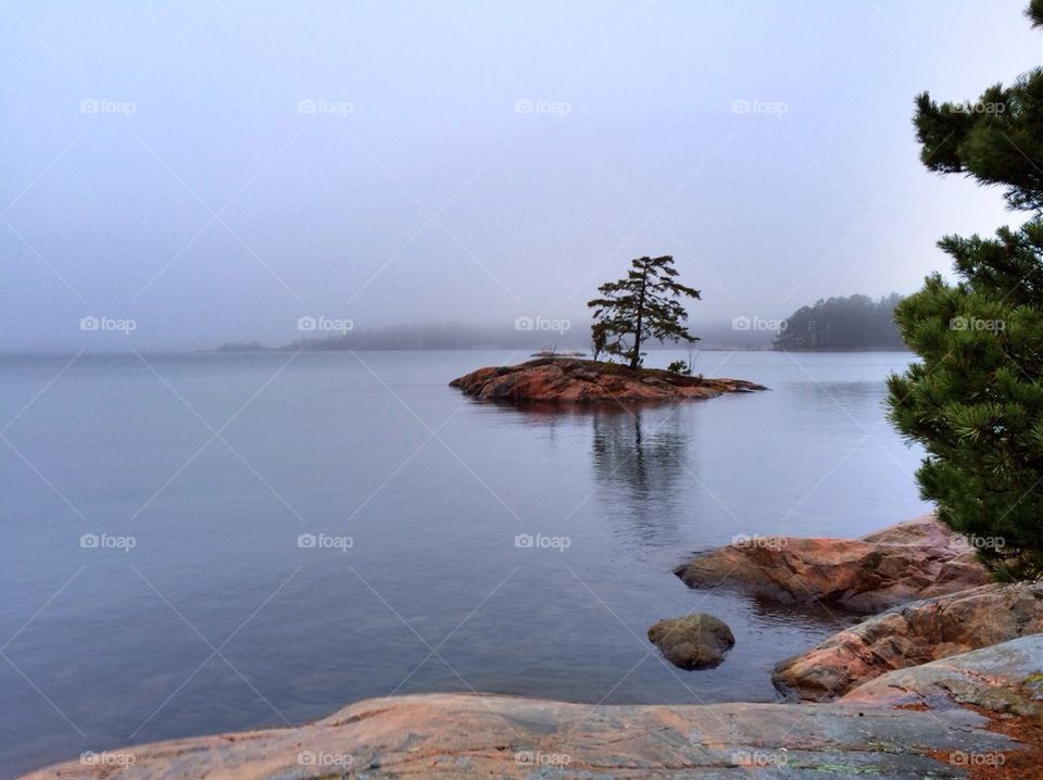 View of calm lake in mist