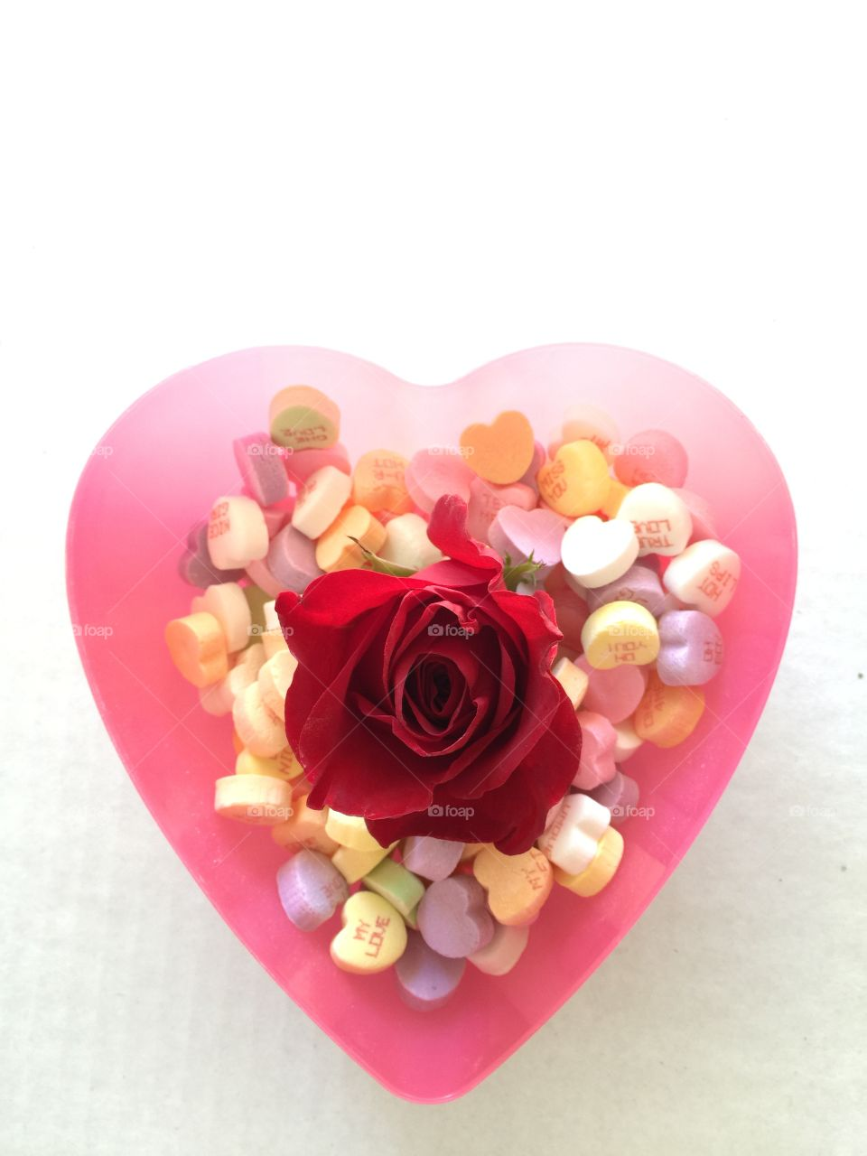 Red rose and candies