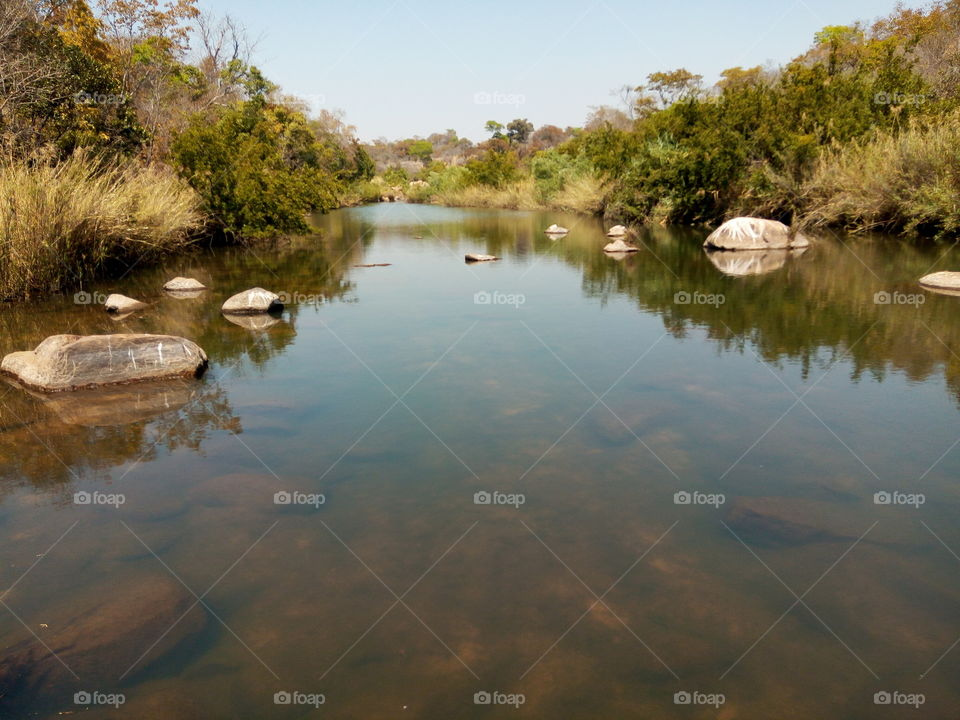 My photo is showing a magnificent river scene (Nora River, somewhere in Goromonzi, Harare, Zimbabwe, Africa)... with scattered rocks laid on the river bed, and if you look again in the water, you can see river sand clearly shown with its clay or mud   combination. Furthermore in the water ;what're also shown are rocks, which are showing their half top clearly on top of the water, while their half bottom are hidden in the water. In addition, their half top which are shown outside the water, are reflecting in the water like someone applied an FX. Furthermore, if you look at both sides of the river, you can see green, brownish, greyish, etc... trees and river crops alined there and they're reflecting in the water too. And lastly but not list, if you take a peek above all the natural features that I listed earlier, you can see a beautiful light blue sky, and it's reflecting in the water too, making the whole scene looks magnificent!