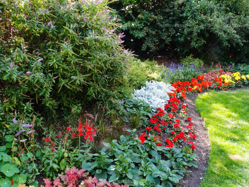 Beautiful bright and colorful flowerbeds in an urban park landscaping on a sunny summer day.