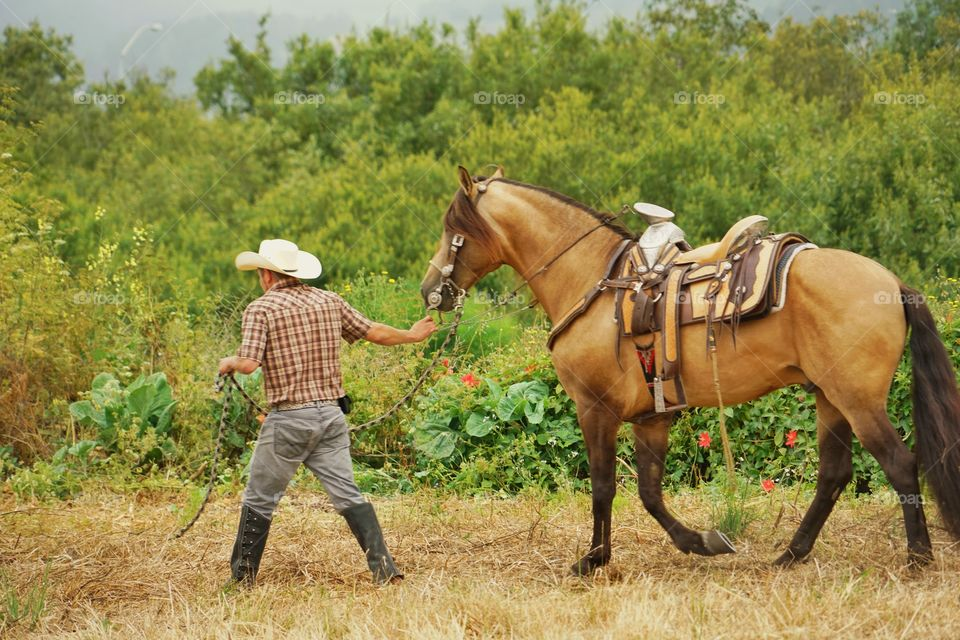Cowboy Leading His Horse