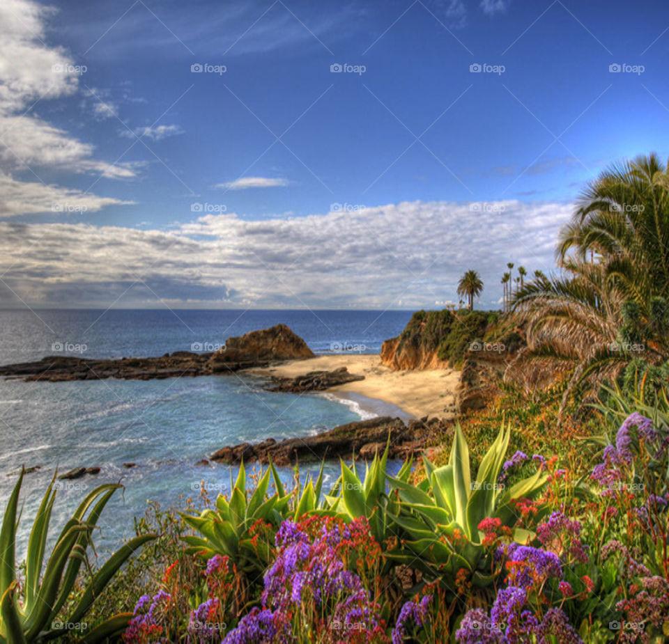 Breathtaking view of Laguna Beach- Home sweet home