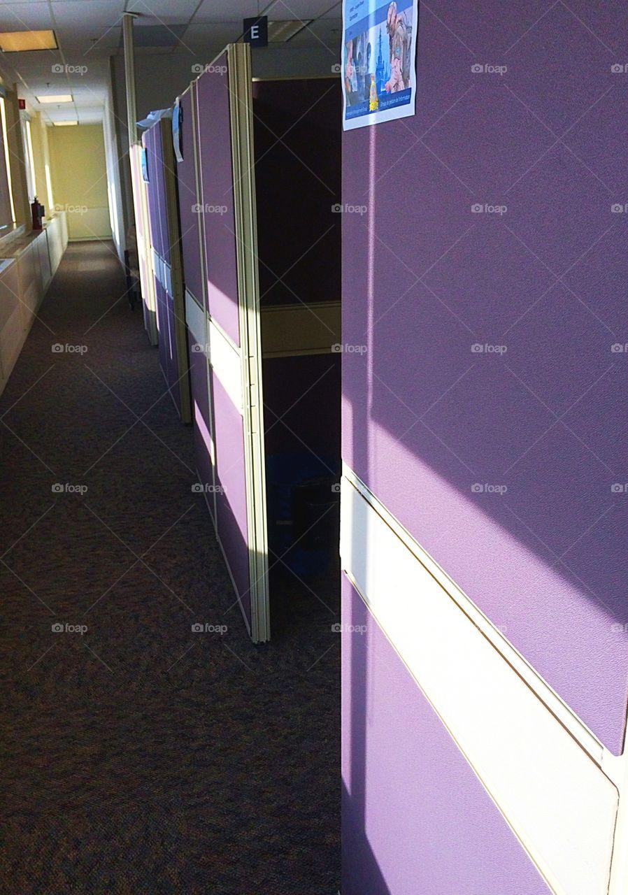 Purple cubicle walls