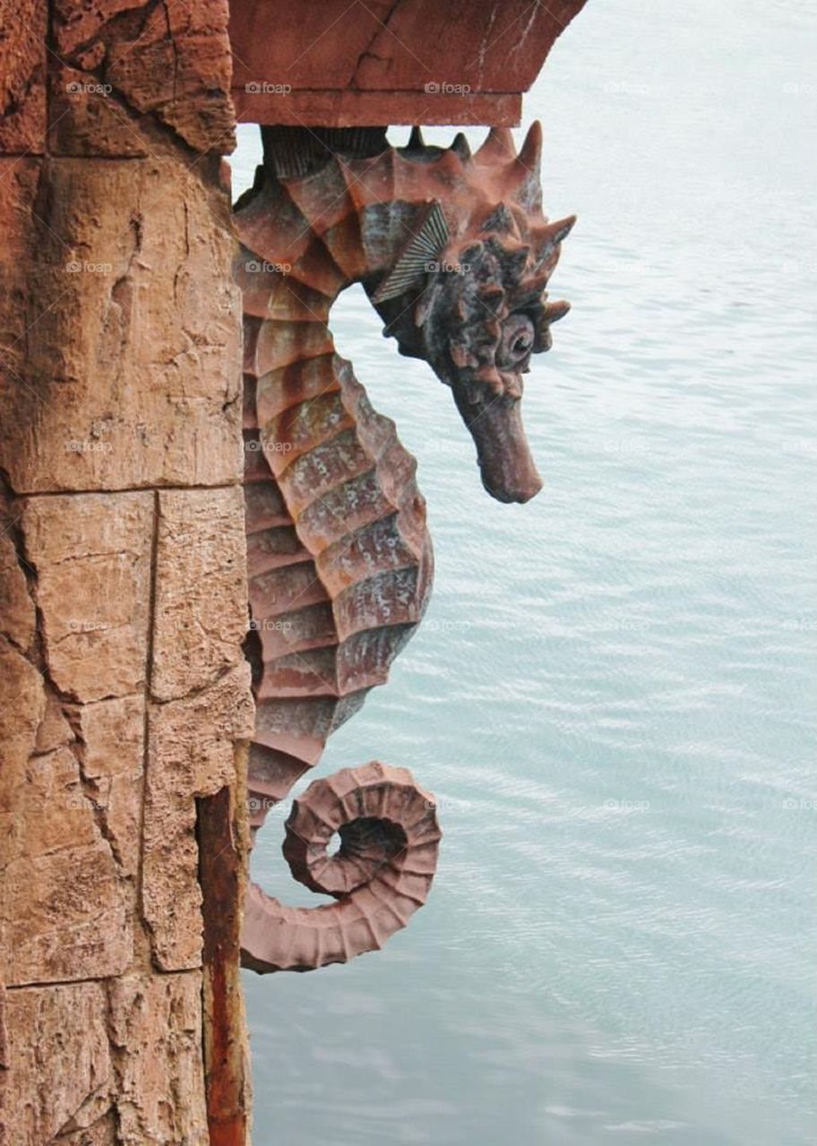 Seahorse architectural detailing