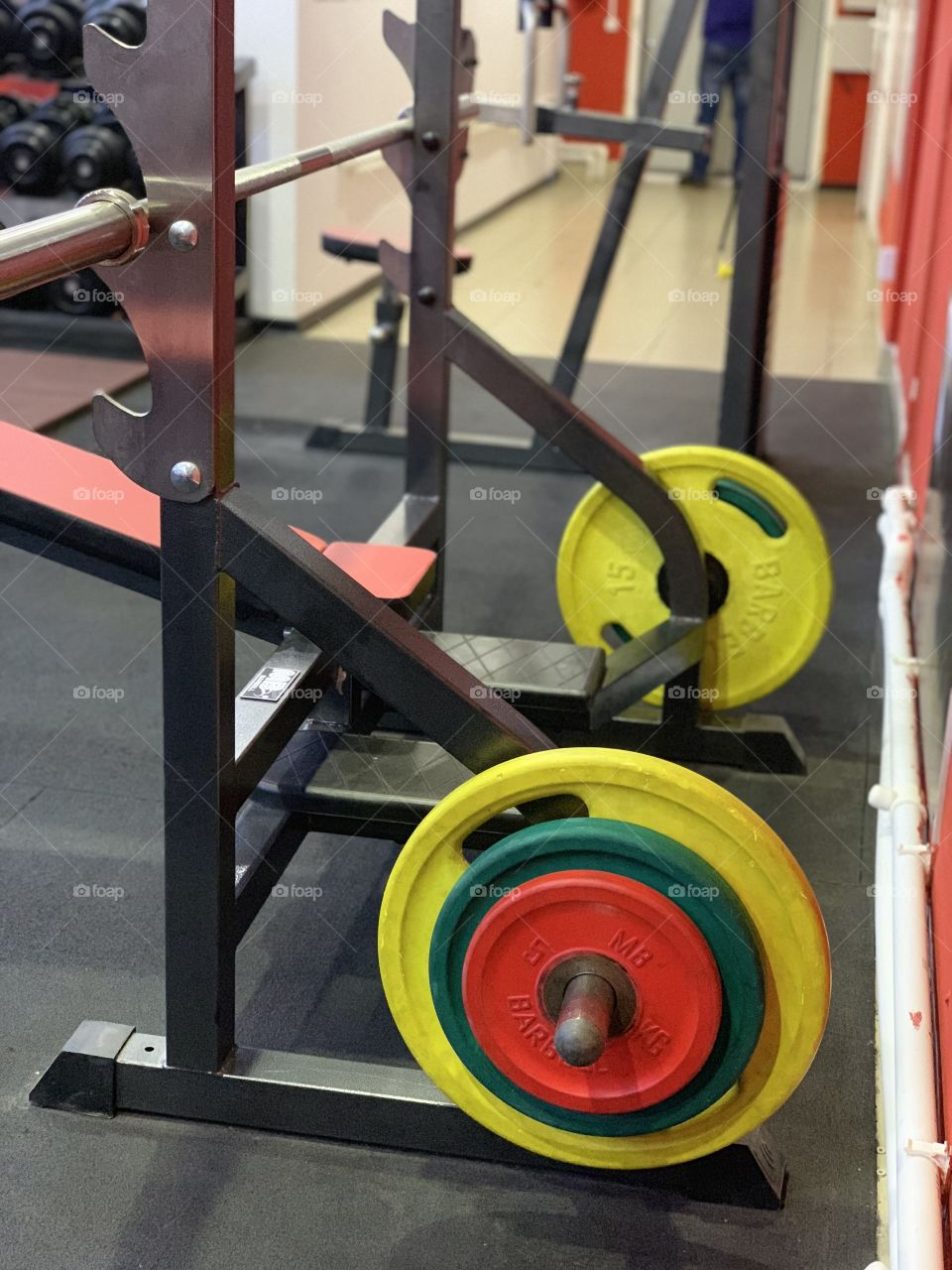 barbell in the gym