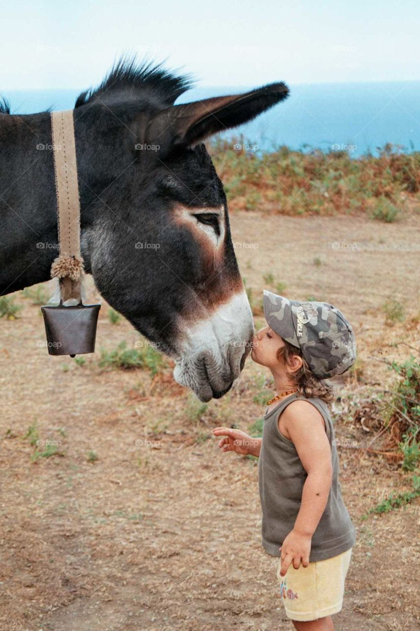 Young boy sharing a tender moment with his animal friend