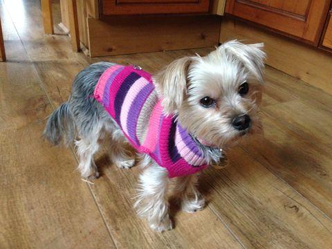 Looking so cute in her jumper