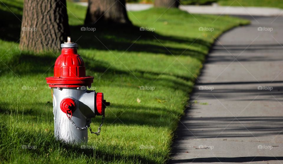 Fire hydrant on the road
